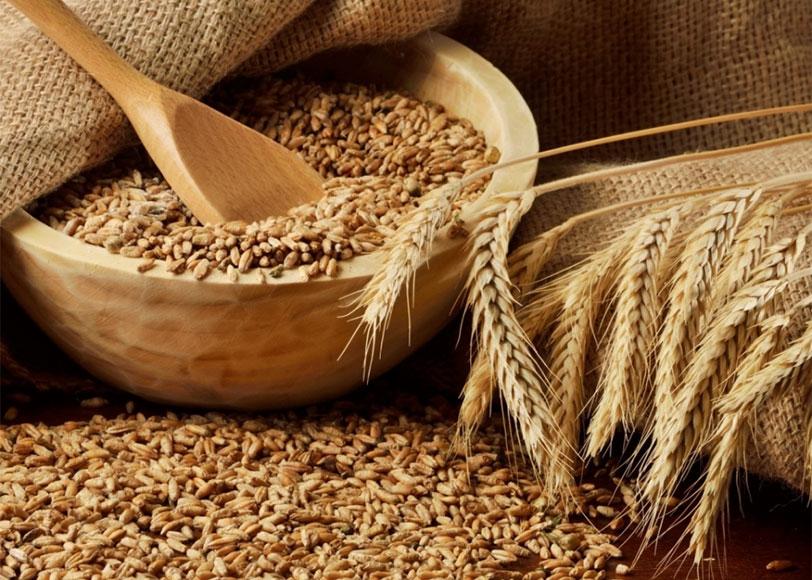 как приготовить зерновую брагу для виски